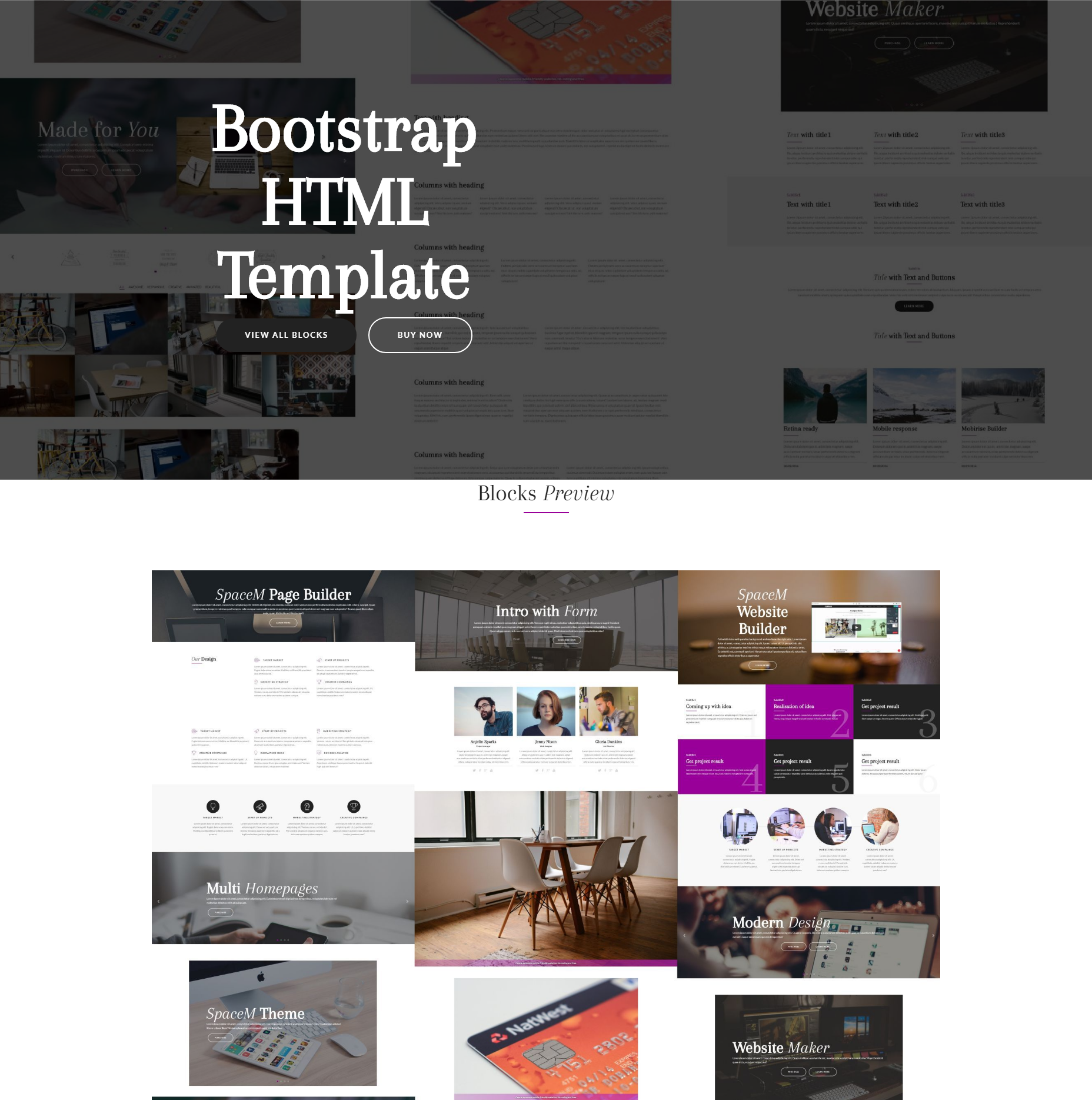 HTML5 Bootstrap SpaceM Templates