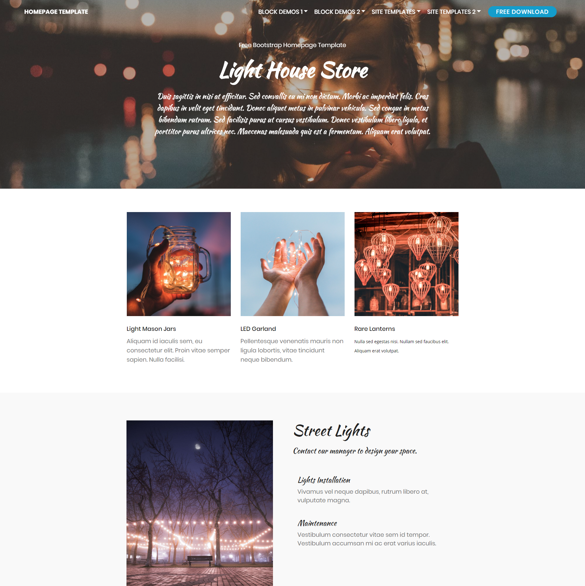 CSS3 Bootstrap Homepage Templates